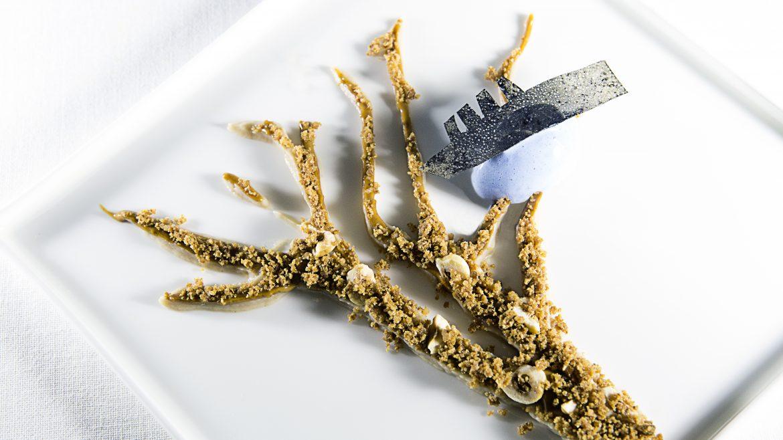 'Terrarista cercano', plato de homenaje a Perejaume en el menú Estilos Pictóricos de Carme Ruscalleda. /Carles Allende