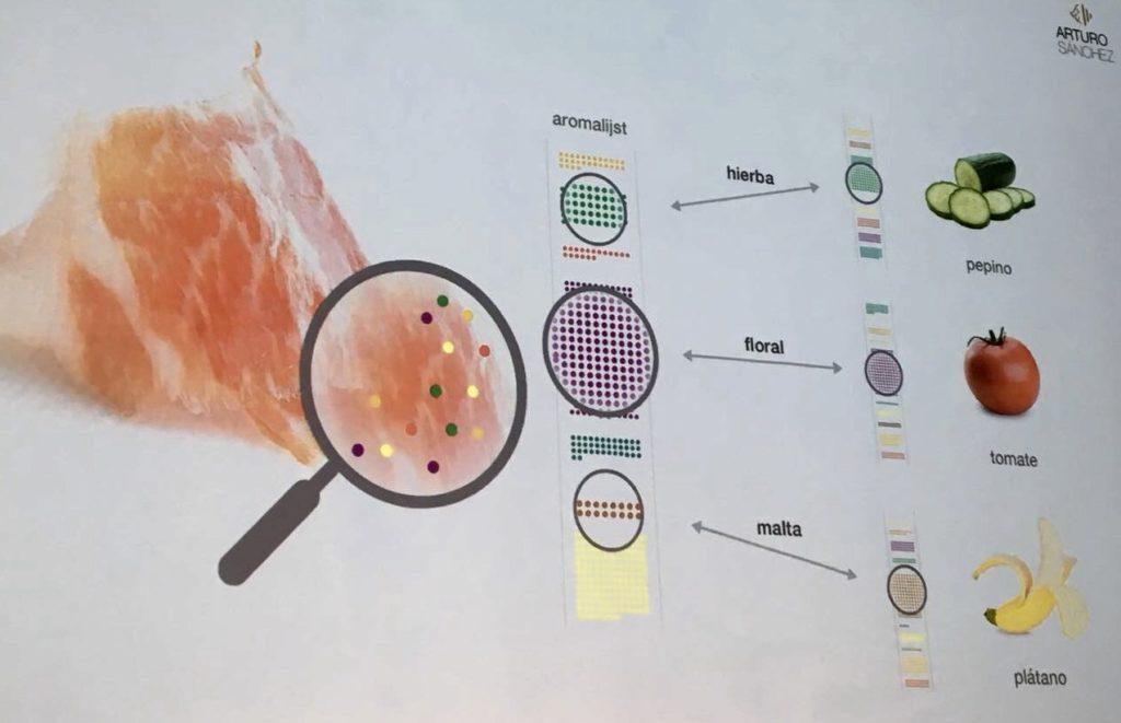 Estudio aromático del jamón ibérico por Food Pairing para Arturo Sánchez. / R. R.